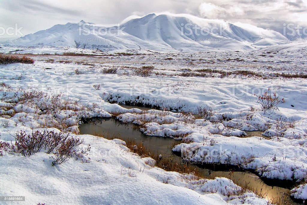 Pools in the tundra mountains stock photo
