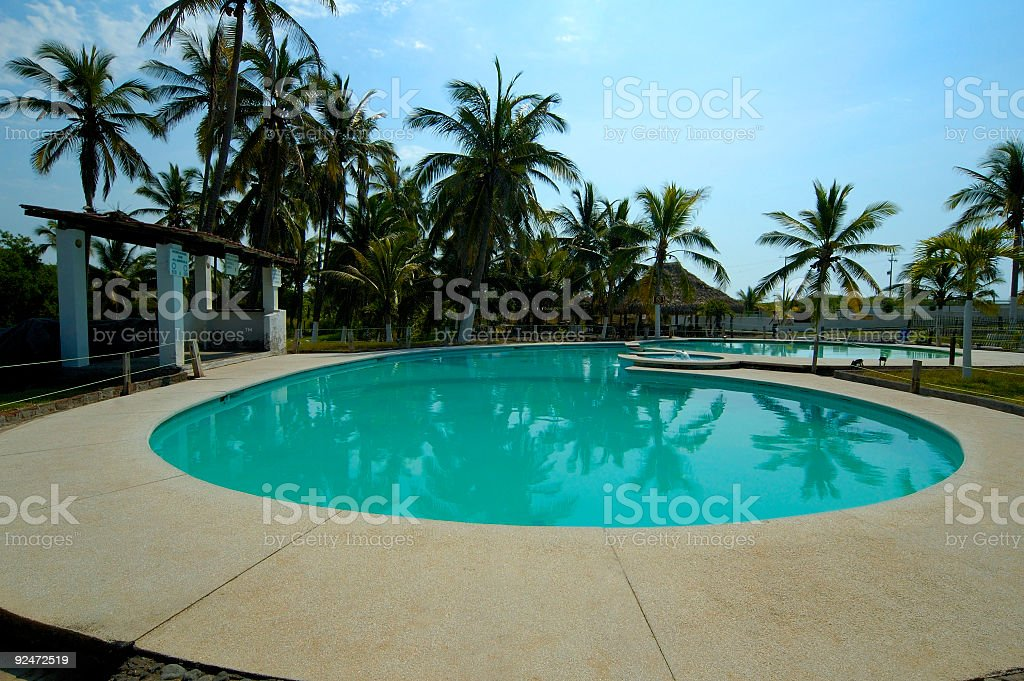 Poolside Palm Trees royalty-free stock photo