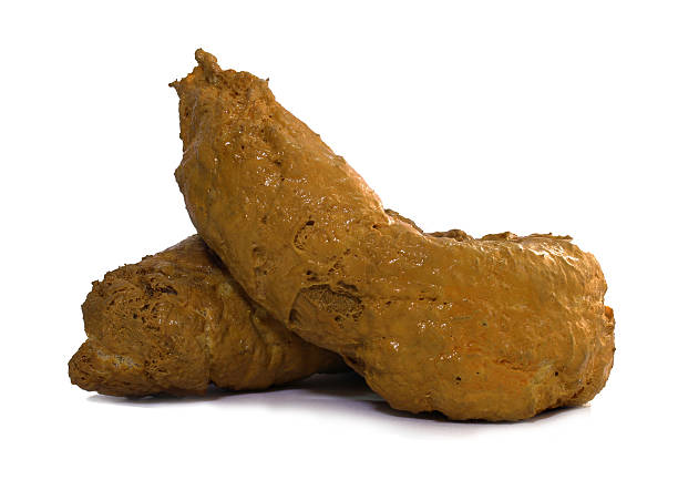 Poop Poop feces stock pictures, royalty-free photos & images