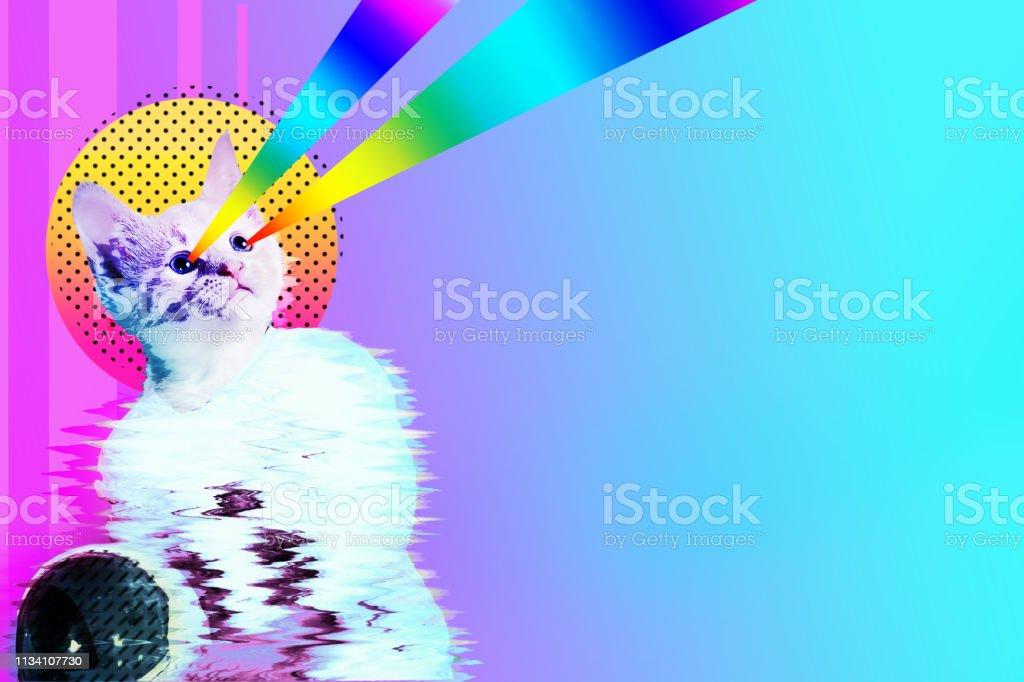 Pop art astronaut cat collage stock photo