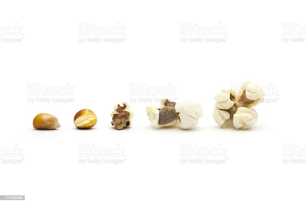 Popcorn evolution royalty-free stock photo