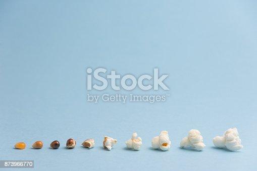 popcorn seed change