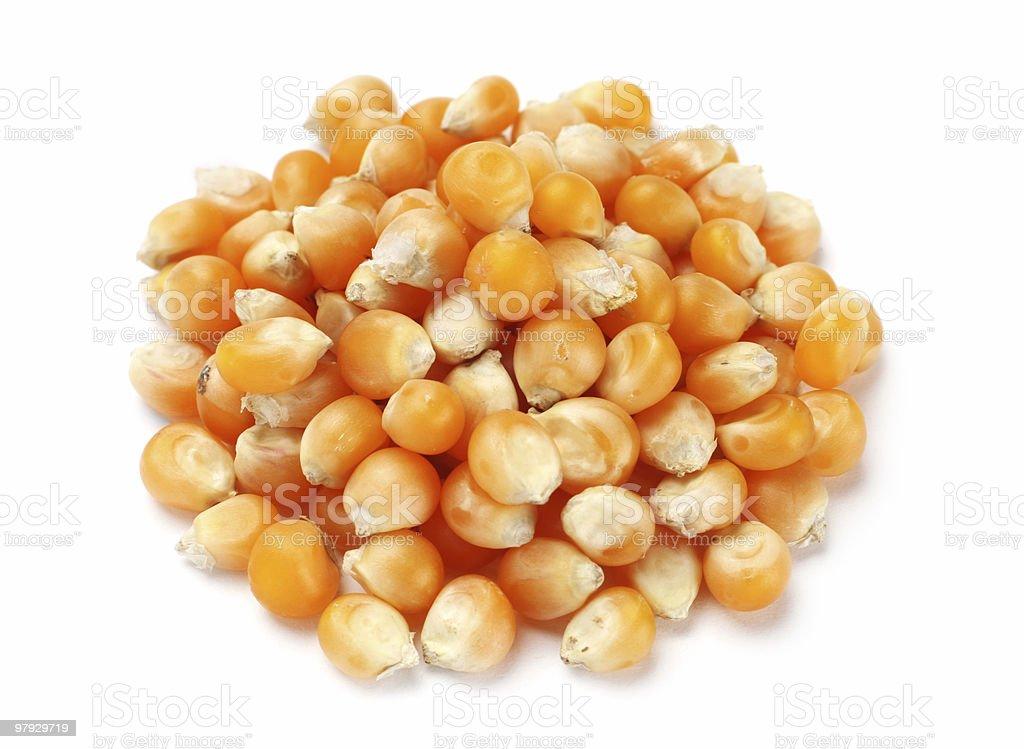 Popcorn seed royalty-free stock photo