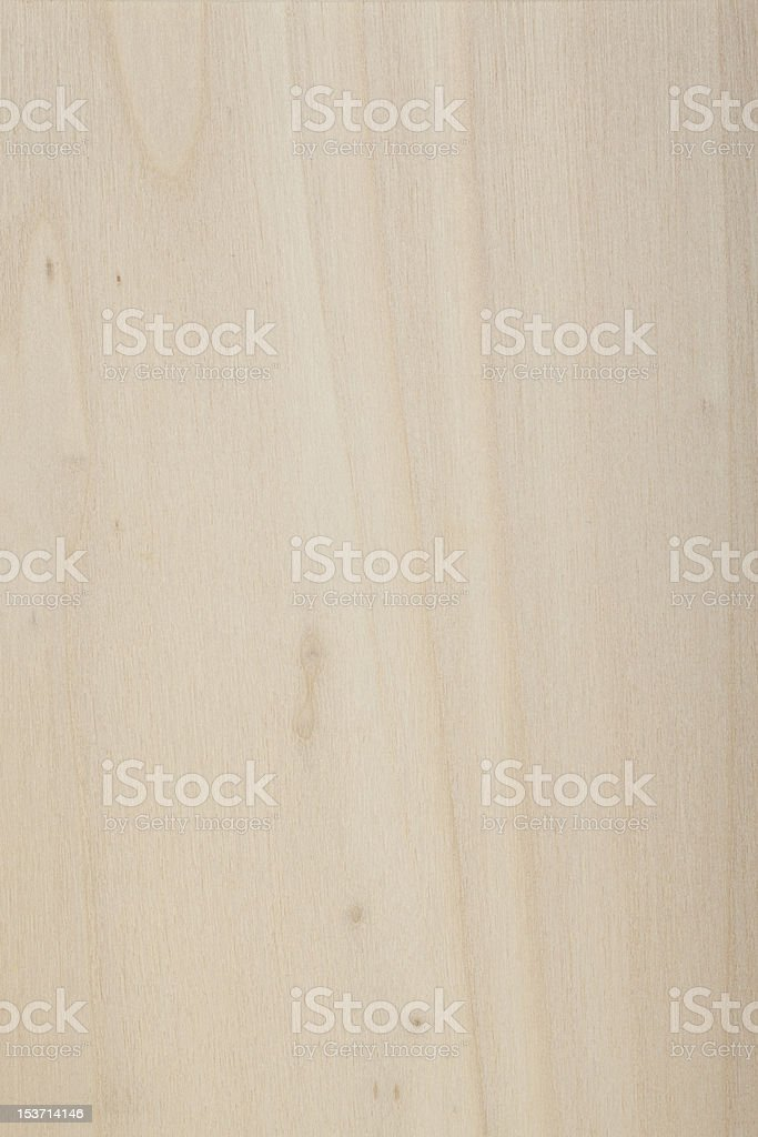 Poplar Tree wood surface royalty-free stock photo