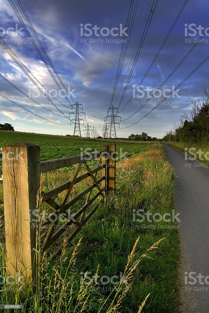 poppies and pylons royalty-free stock photo