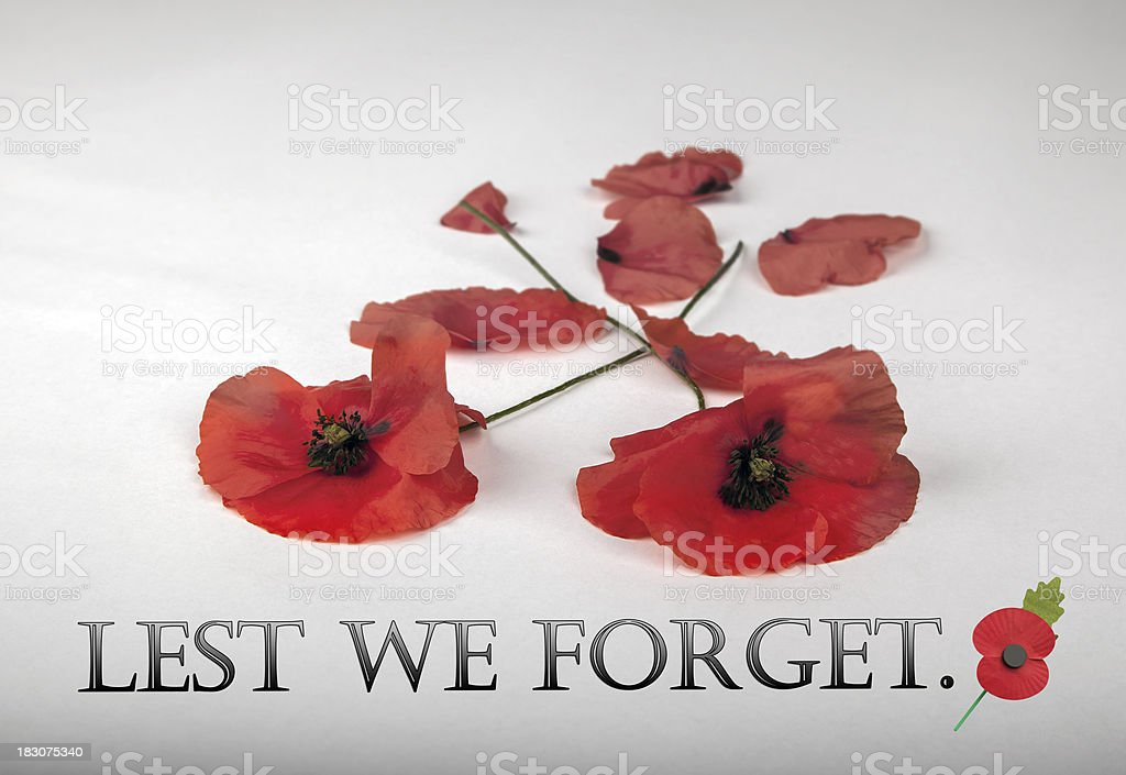 Poppies for Remembrance Day - Lest We Forget royalty-free stock photo