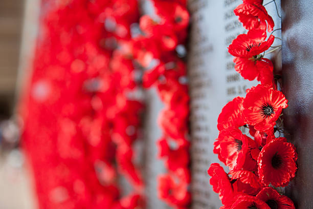 poppies on a war memorial - war memorial stock pictures, royalty-free photos & images
