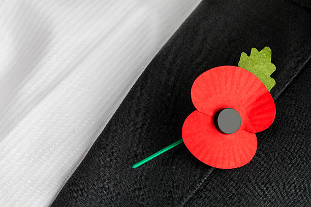 11 Poppy Lapel Pin Stock Photos, Pictures, and Images - iStock