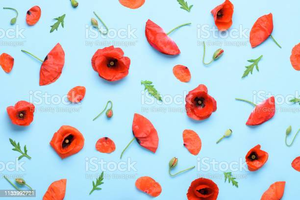 Poppy flowers pattern background picture id1133992721?b=1&k=6&m=1133992721&s=612x612&h=zforz64h 1rzty0jkyrfl1xema s01cldcsdlcyw7a4=