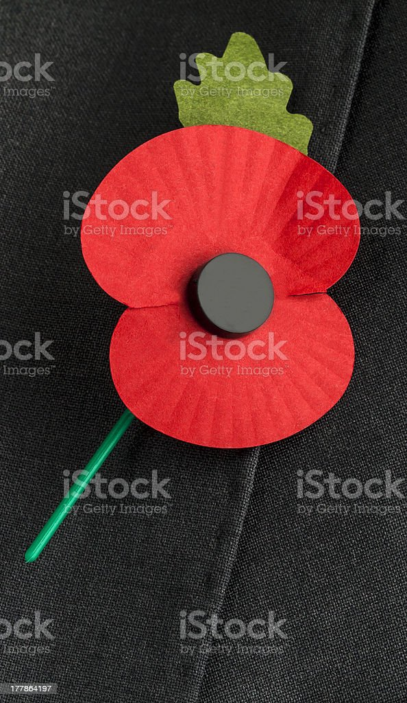 Poppy for Remembrance Day. royalty-free stock photo
