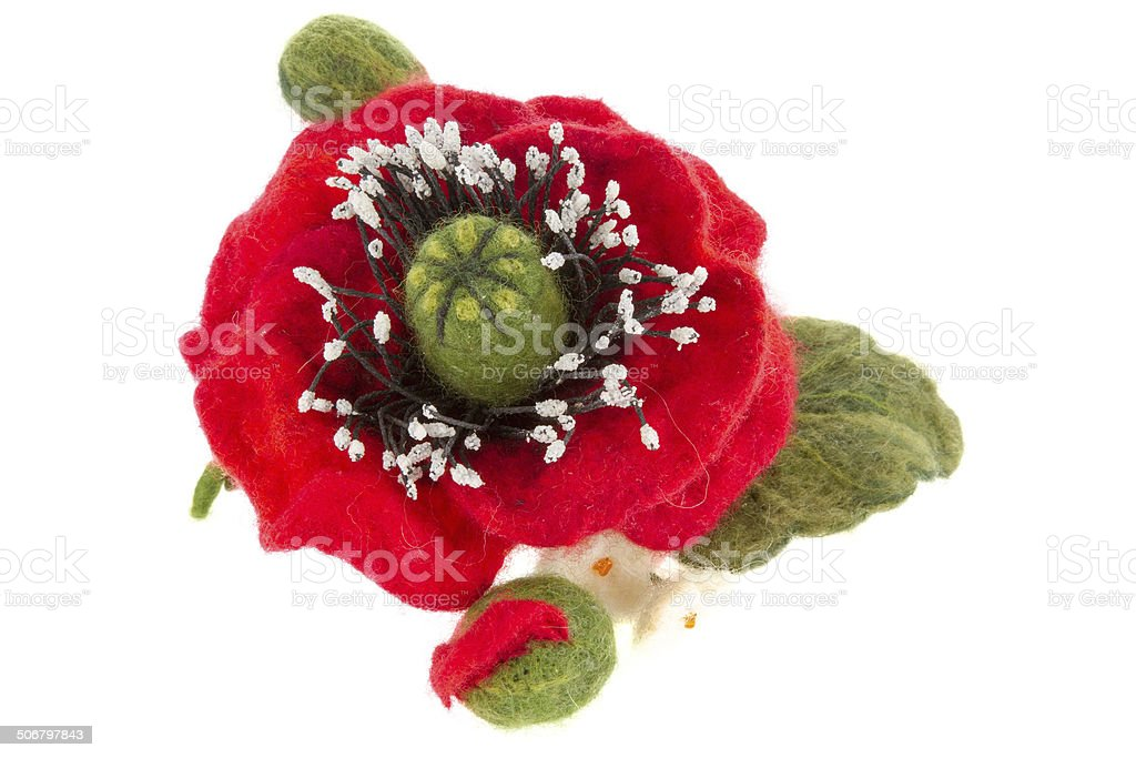 poppy hair clip made of wool stock photo