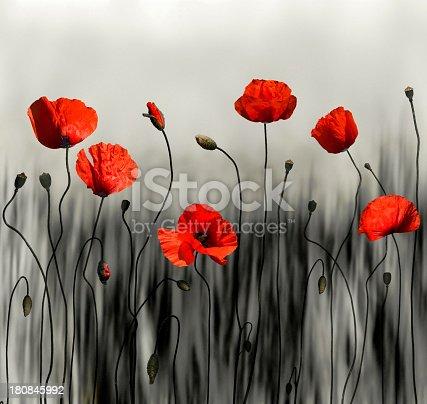 istock Poppy modern art image 180845992