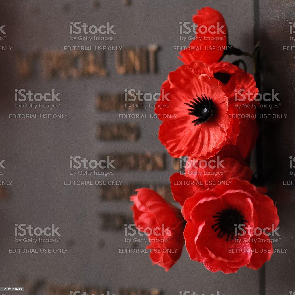 poppy on the roll of honour in australian war memorial stock photo