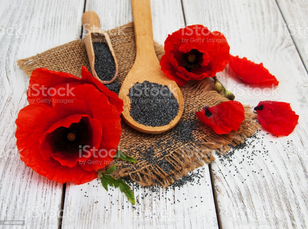 Poppy seeds and flowers royalty-free stock photo