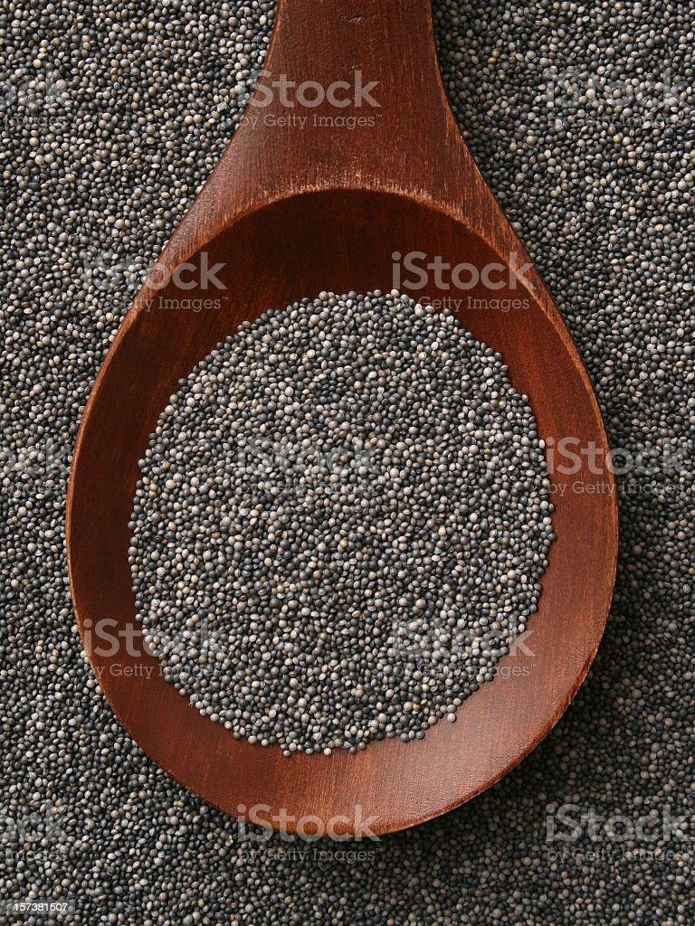 Poppy seeds royalty-free stock photo