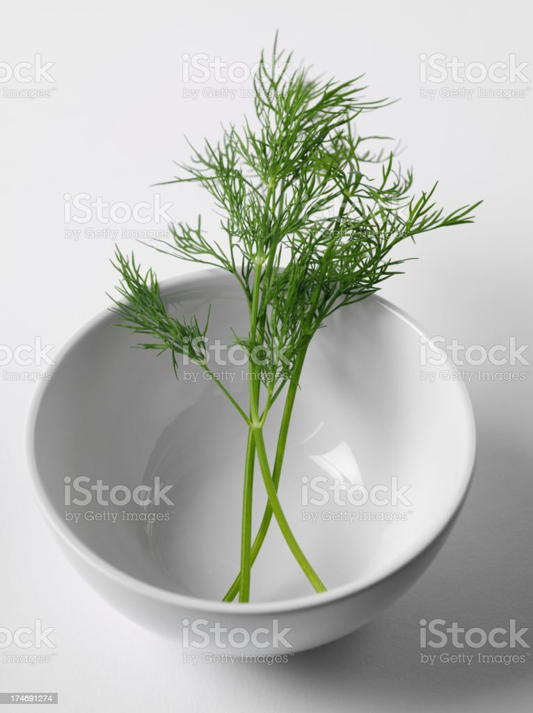 Porcelain bowl with a Sprig Dill royalty-free stock photo
