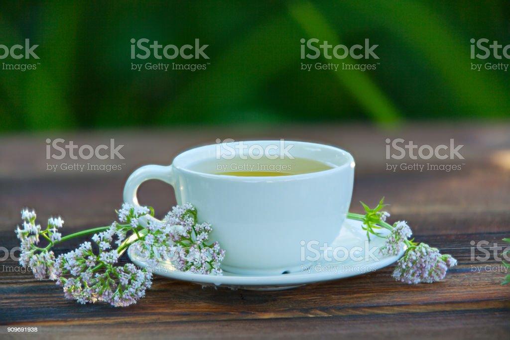 Porcelainl Tasse mit grünem Tee auf Tisch – Foto