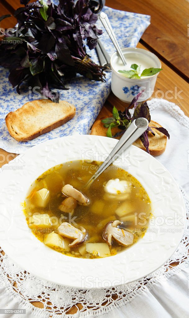 Porcini mushroom soup with sour cream and basil stock photo