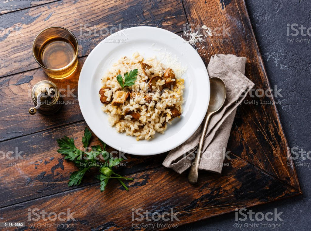Risotto porcini stock photo