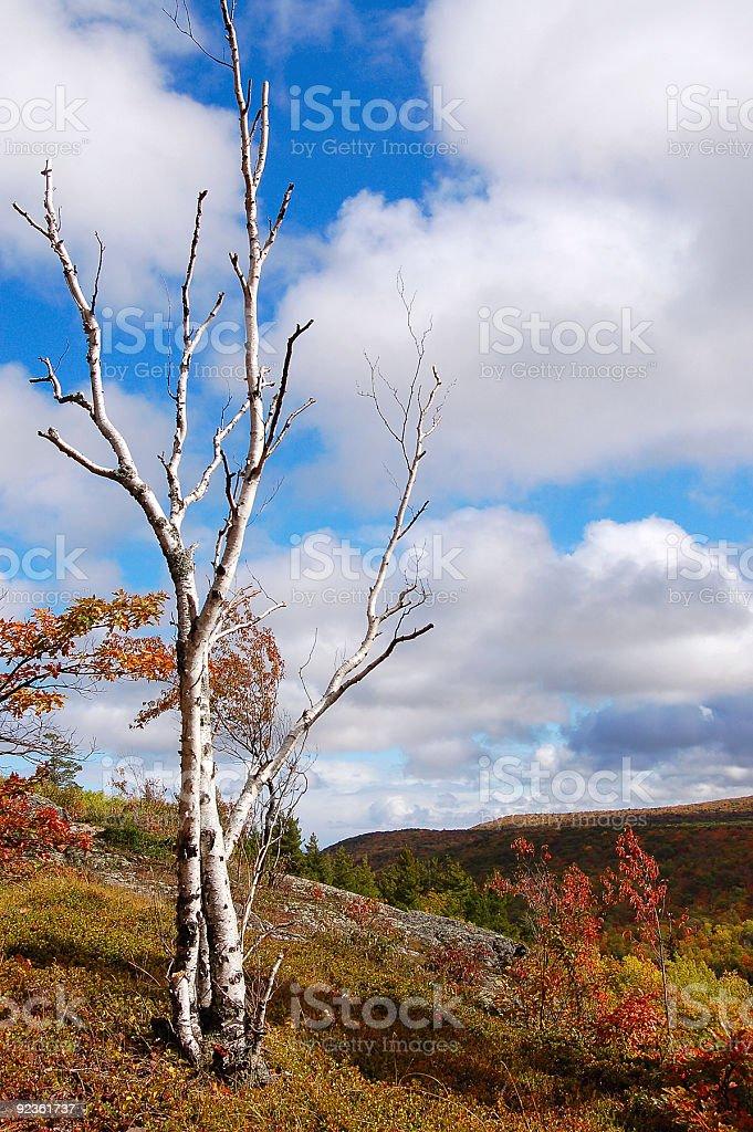 Porcupine Mountains Autumn Landscape royalty-free stock photo