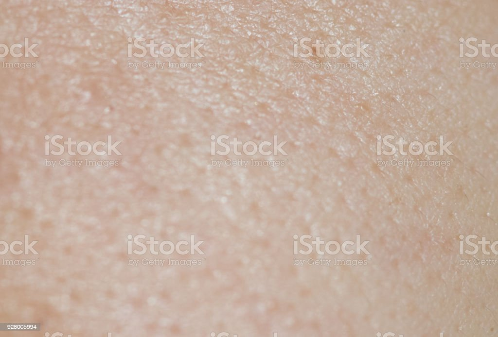 Pores on the surface of women. stock photo