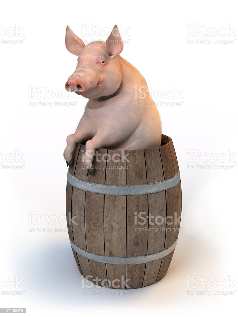Pork Barrel concept illustration royalty-free stock photo