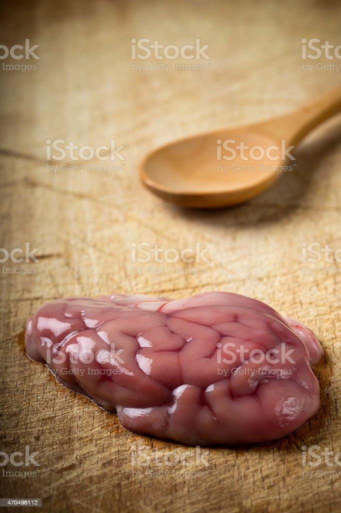 Pork brain stock photo