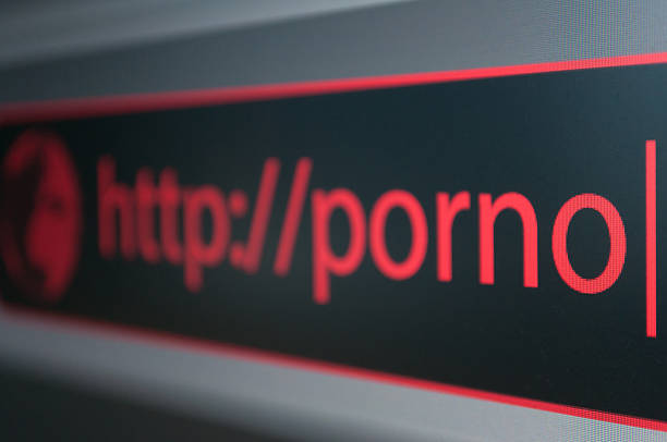 censoring internet pornography .