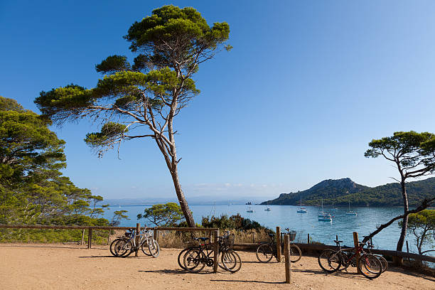 Porquerolles island in France Porquerolles island  in south of France var stock pictures, royalty-free photos & images