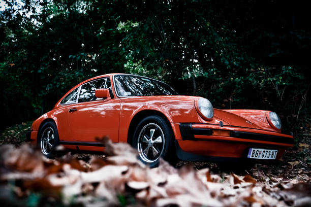 Porsche 911 in the woods Porsche 911 in the woods, orange, nature all around, photographed in the autumn with trees and leas. Dominate orange colour of the car and green background. Historical car and vintage. porsche stock pictures, royalty-free photos & images