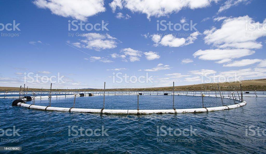Port Lincoln l'Aquaculture - Photo