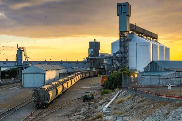 林肯港糧倉與貨車在日出時 - 火車車廂 個照片及圖片檔
