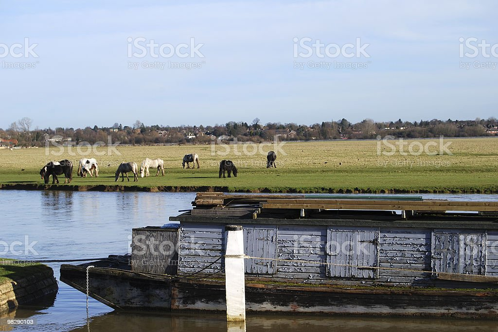 Port Meadow, Oxford, Englad royalty-free stock photo