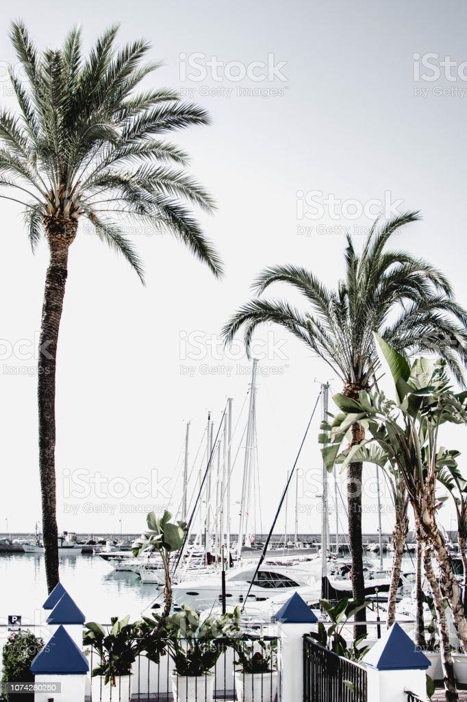 Gratis dating Costa del Sol 30 år gammel fyr dating 90 år gammel