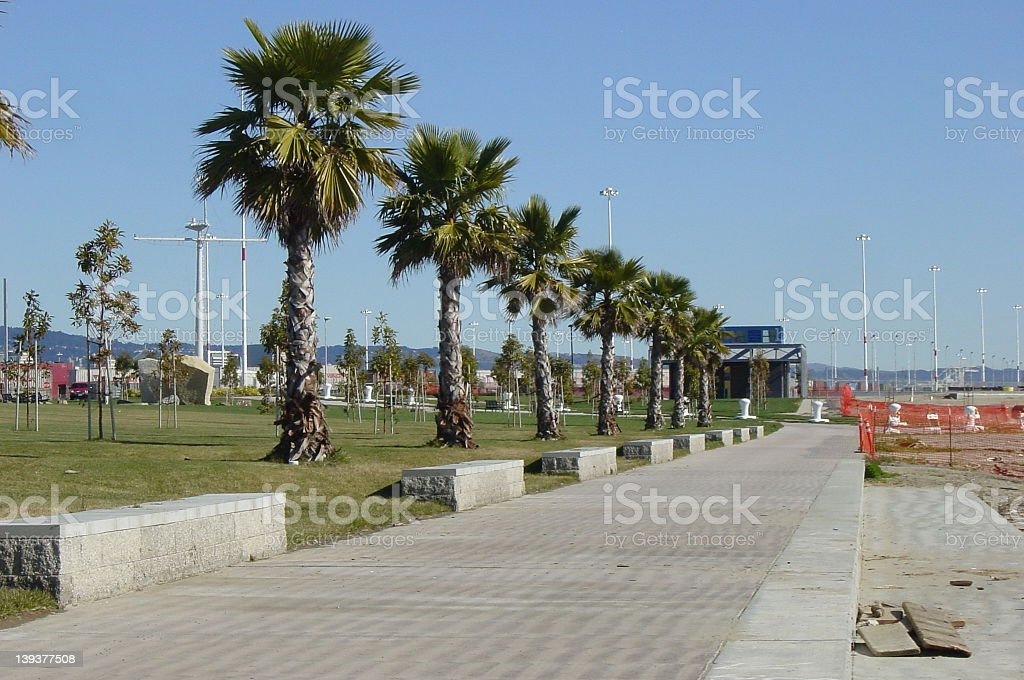 Port of Oakland Palm Trees stock photo