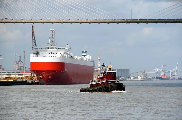 Port de Savannah - Photo