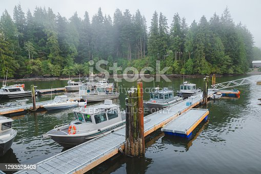 Port Renfrew Marina on a misty, cloudy evening as all of the local fishing charter boats are docked.