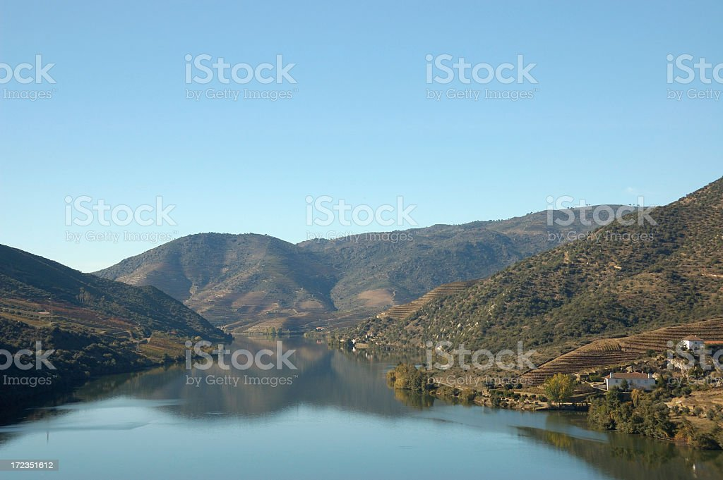 Puerto de vinos de los viñedos, otoño. foto de stock libre de derechos