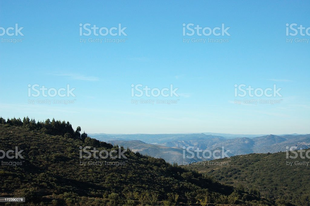 Port wine vineyards, Autumn view. royalty-free stock photo