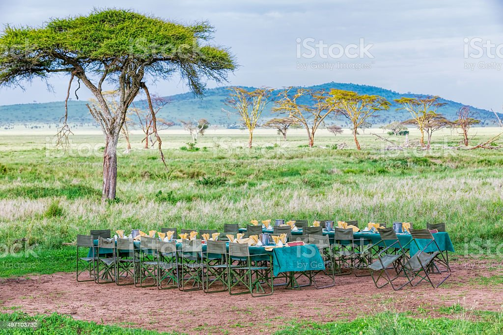 Portable Restaurant and Africa Acacia Trees stock photo