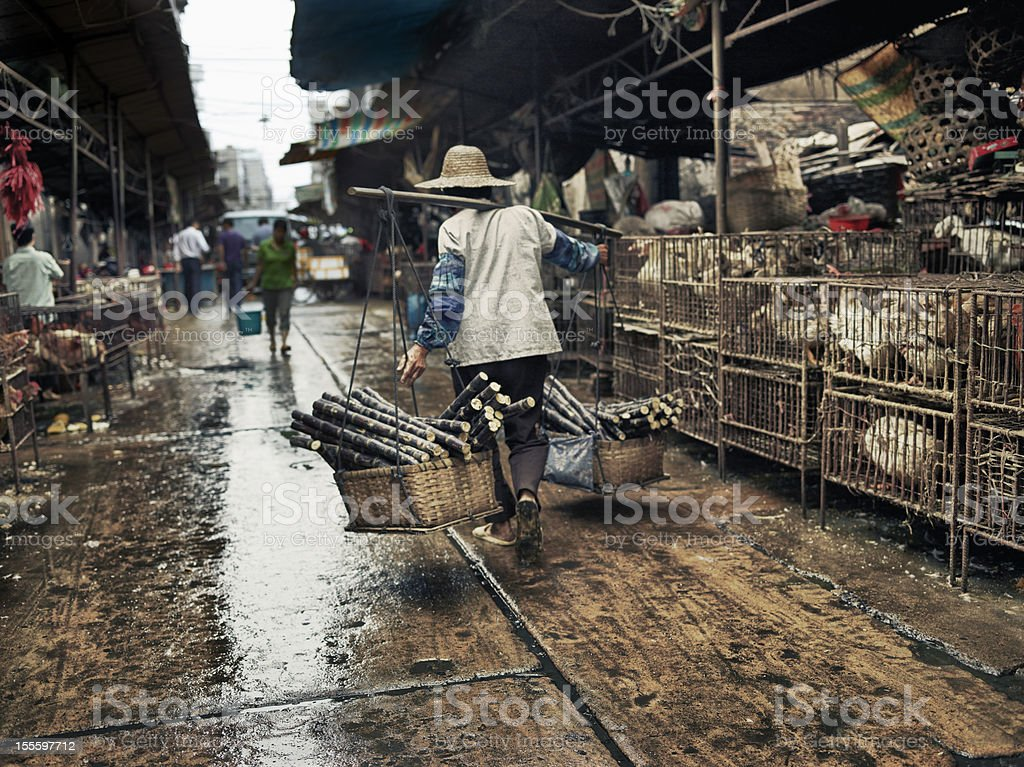 Porter with sugar cane in the market stock photo