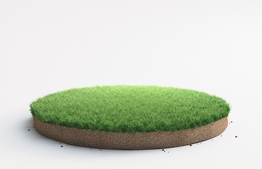 Portion of land with grass