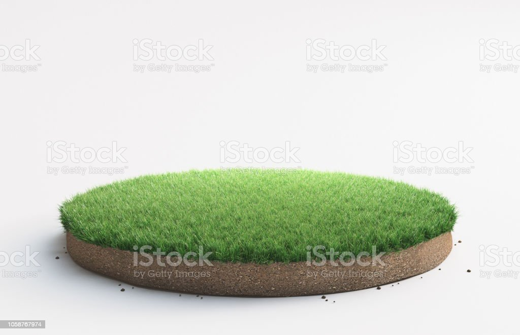 Portion de terrain avec gazon - Photo