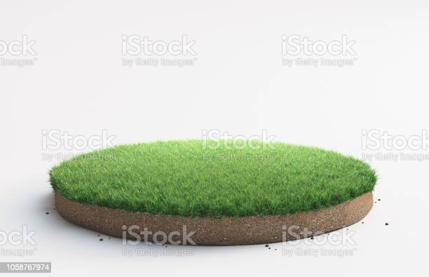 Photo of Portion of land with grass