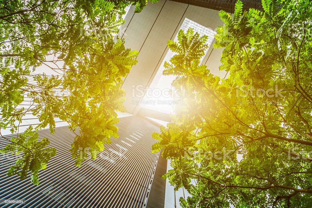 portion of trees against office buildings - Royalty-free Architecture Stock Photo