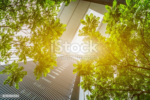 istock portion of trees against office buildings 626394534