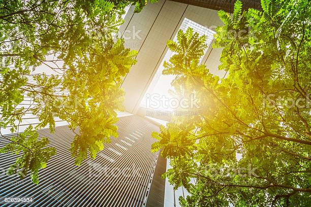 Portion of trees against office buildings picture id626394534?b=1&k=6&m=626394534&s=612x612&h=7tdeo9b84 m3chf2gjsbaujqknkhlcpobn3chj wucq=
