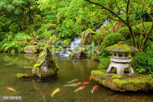 istock Portland Japanese Garden pond with koi fish carp 1041281870
