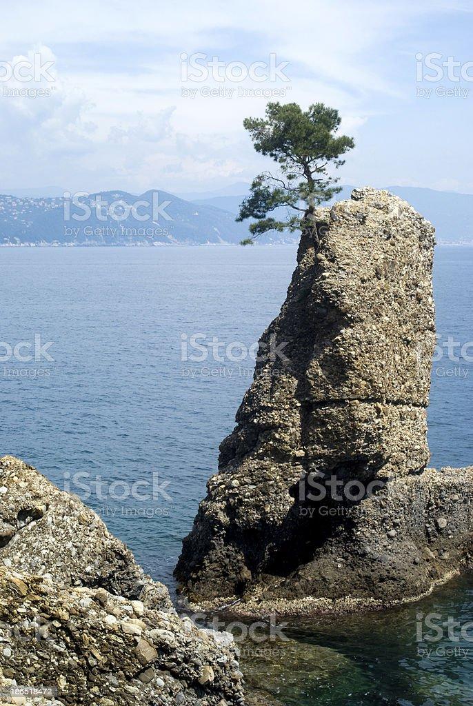 Portofino bay royalty-free stock photo