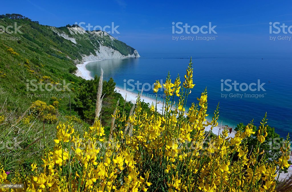 portonovo, monte conero stock photo